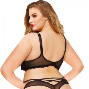 Wholesale 2020 Latest Design Sexy Mesh Plus Size Bra For Fat Ladies